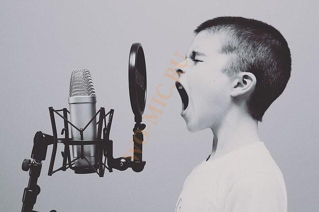 лучшие электретные микрофоны